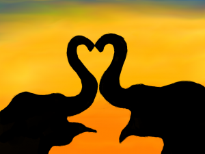 elephant_heart_by_poxantic-d65asw1